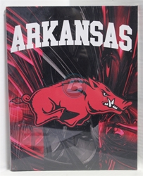 "University of Arkansas Canvas 11"" x 14"" Wall Hanging collectible canvas, ncaa licensed, officially licensed, collegiate collectible, university of"