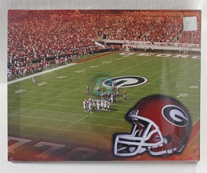 "University of Georgia (1) Field Canvas 11"" x 14"" Wall Hanging collectible canvas, ncaa licensed, officially licensed, collegiate collectible, university of"